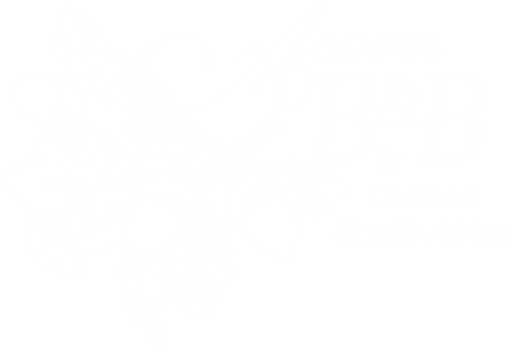 Acorn B&B Logo - Guesthouse Accommodation - Berea, Durban, South Africa