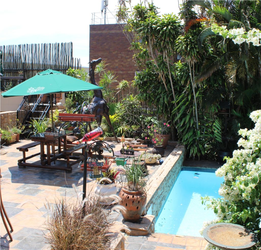Acorn B&B Outdoors - Guesthouse Accommodation - Berea, Durban, South Africa
